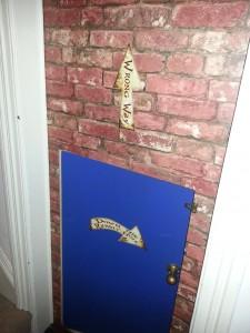 Alice in Wonderland tiny door