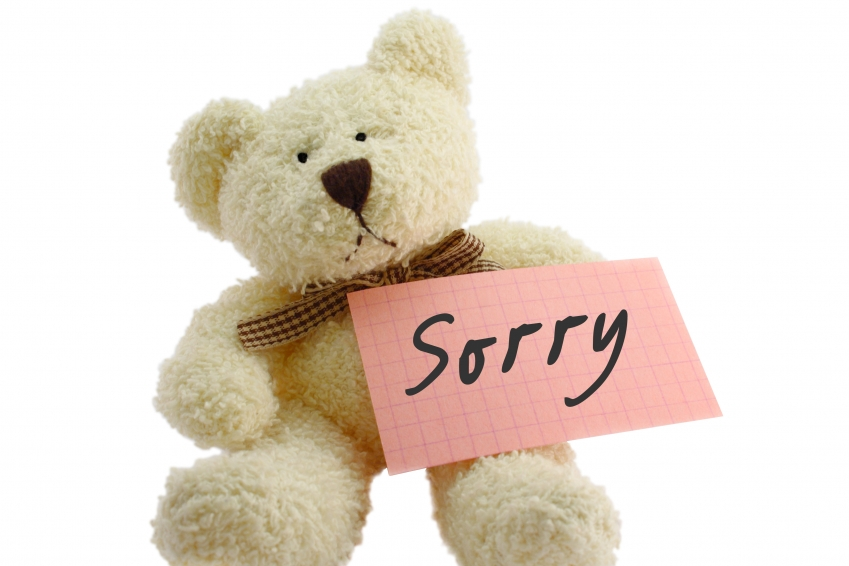 Sorry bear